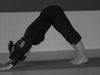pose and counter pose in yoga  savage lamb yoga  savage