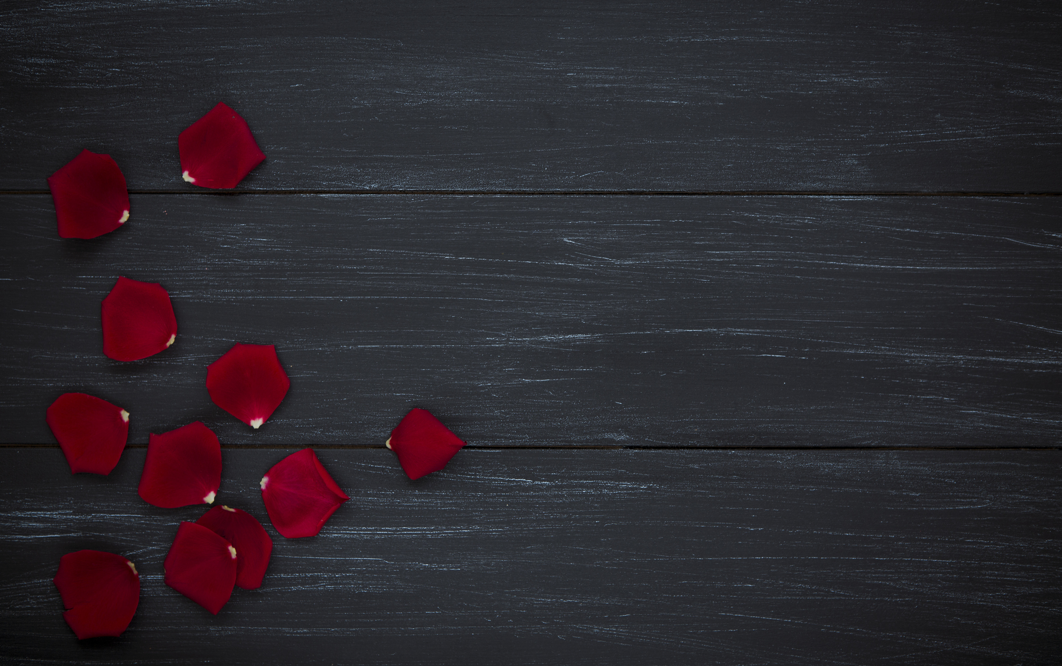 Red rose petals on wood